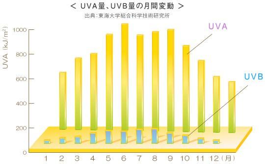 UVA、UVB量の月間変動